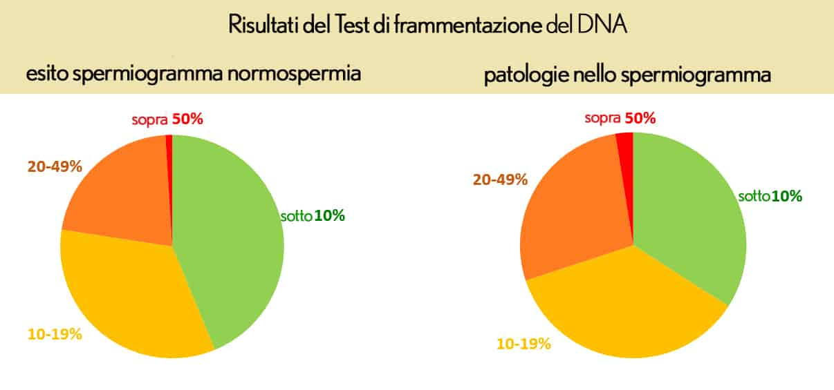 Perché è importante analizzare l'integrità del DNA degli spermatozoi?